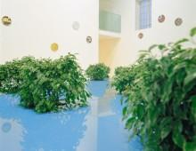 Projets pour un jardin
